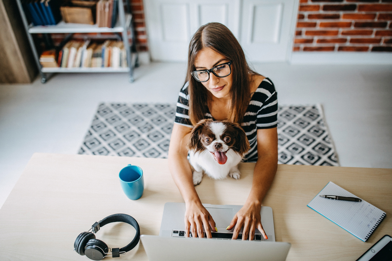 Woman at desk with dog in her lap